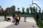Tenisový klub Fortuna Trnava - Stolný tenis - ZRUŠENÉ