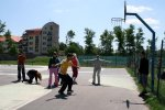 Tenisový klub Fortuna Trnava - Basketbal